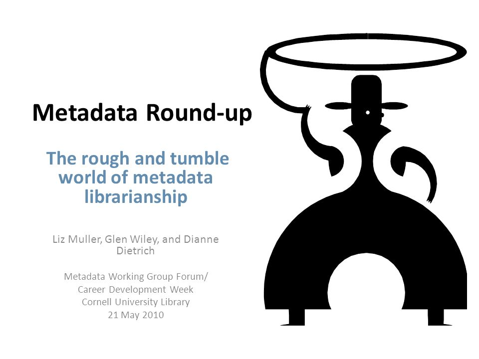 What does a Metadata Librarian do.