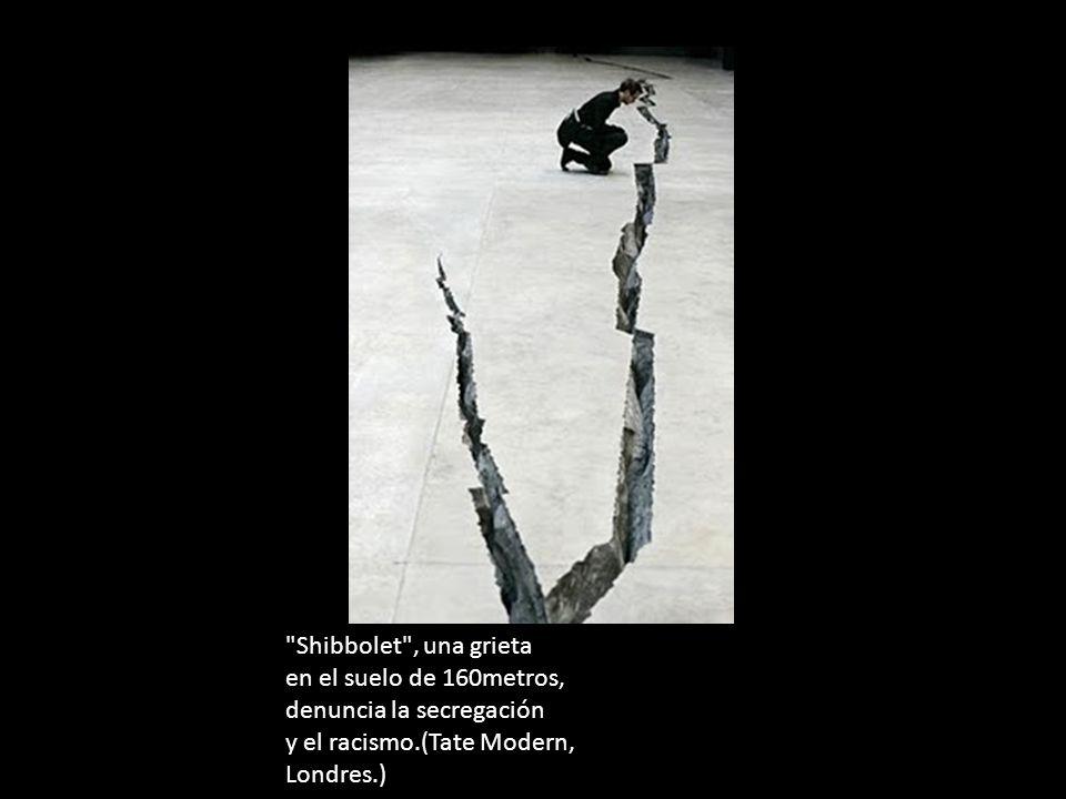 Shibbolet , una grieta en el suelo de 160metros, denuncia la secregación y el racismo.(Tate Modern, Londres.)