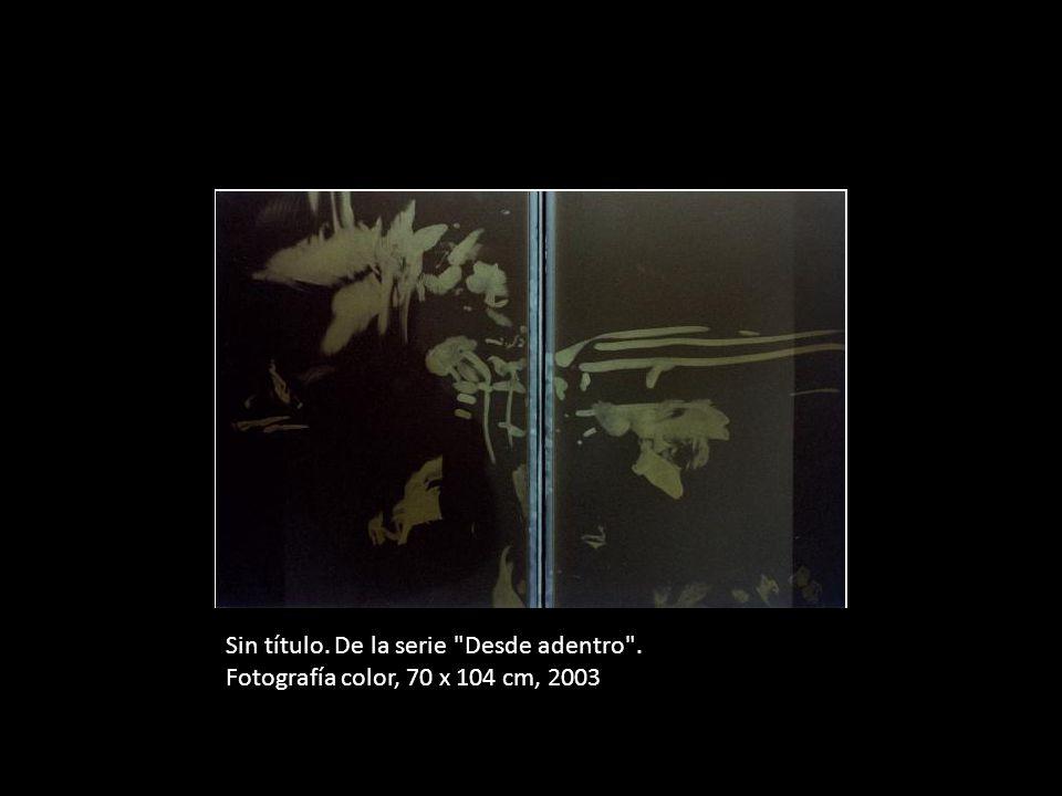 Sin título. De la serie Desde adentro . Fotografía color, 70 x 104 cm, 2003