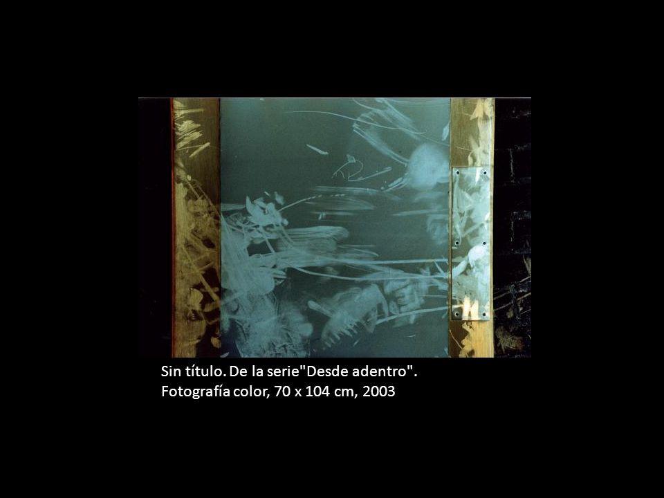 Sin título. De la serie Desde adentro . Fotografía color, 2003