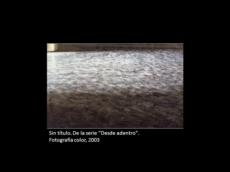 Sin título. De la serie Desde adentro . Fotografía color, 94 x 140 cm, 2003