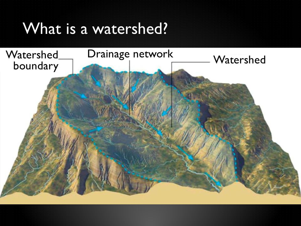 What is a watershed? Watershed boundary Drainage network Watershed