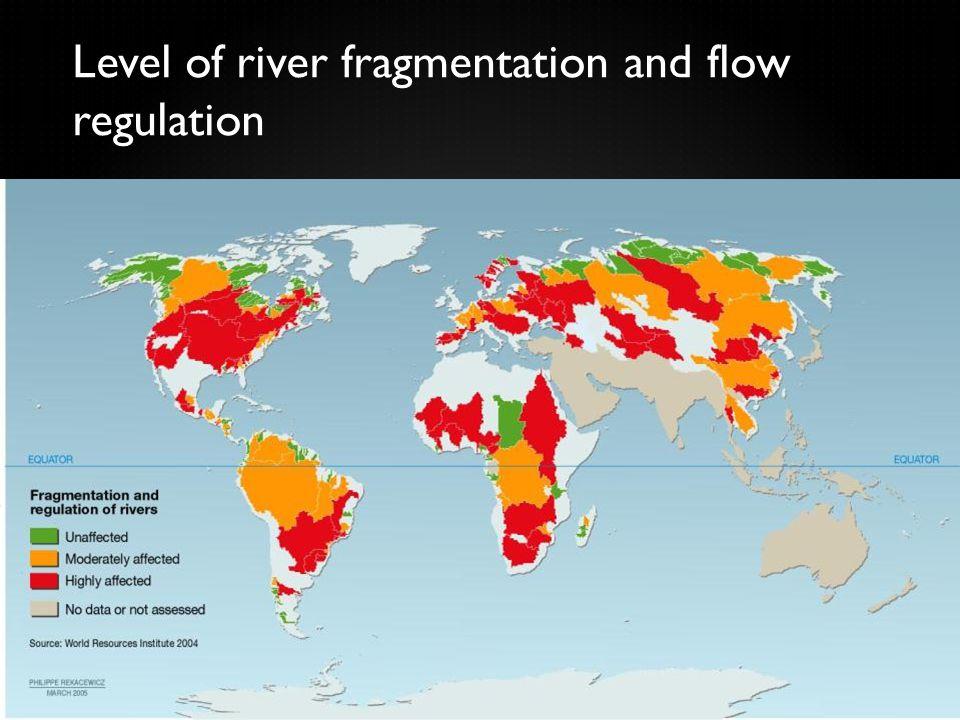 Level of river fragmentation and flow regulation 61