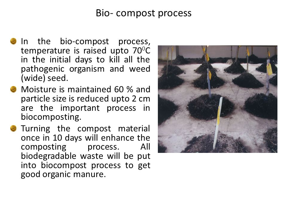 Bio- compost process In the bio-compost process, temperature is raised upto 70 0 C in the initial days to kill all the pathogenic organism and weed (wide) seed.