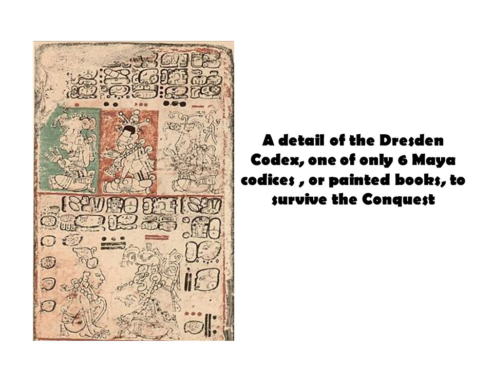 A detail of the Dresden Codex, one of only 6 Maya codices, or painted books, to survive the Conquest