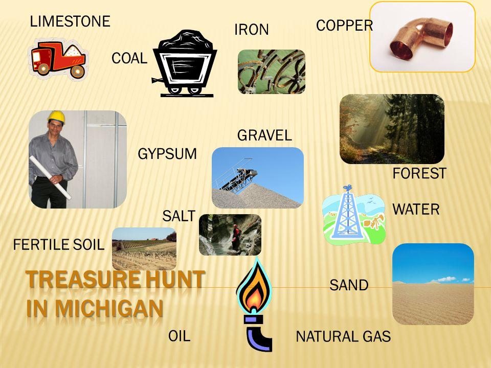 IRON NATURAL GAS OIL GRAVEL GYPSUM LIMESTONE WATER COPPER SALT SAND FERTILE SOIL COAL FOREST