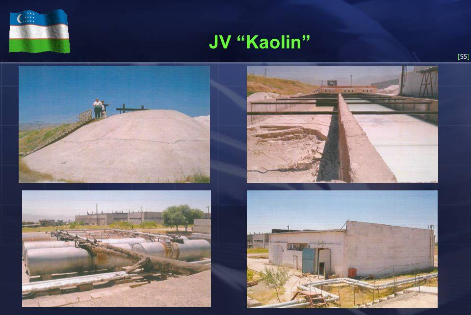 [55] JV Kaolin