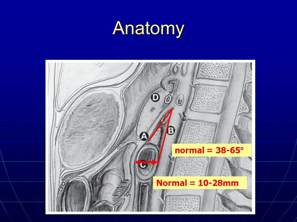 Anatomy normal = 38-65 º Normal = 10-28mm