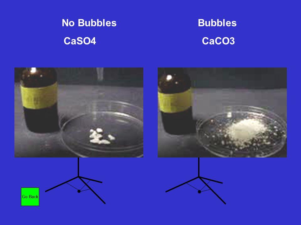 No Bubbles Bubbles CaSO4 CaCO3