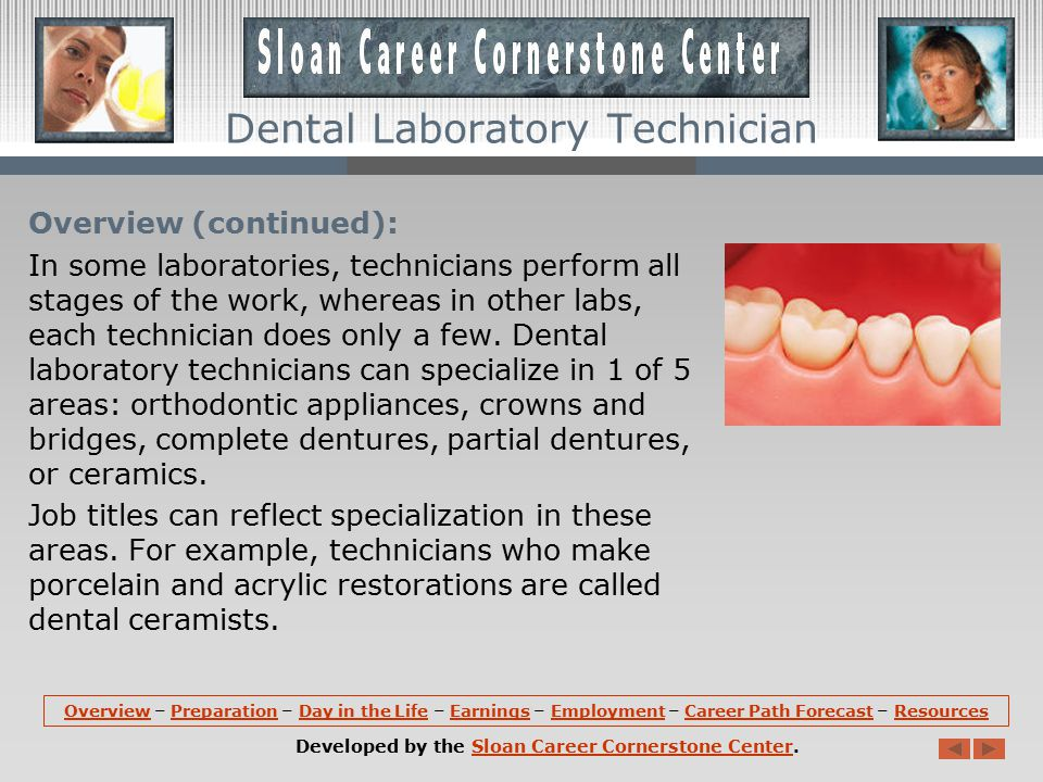 Resources: More information about Dental Laboratory Technician is available at the Sloan Career Cornerstone Center, including accredited university programs, suggestions for precollege students, a free monthly careers newsletter, and a PDF summarizing the field.Dental Laboratory TechnicianSloan Career Cornerstone Centeraccredited university programs precollege students newsletterPDF summarizing the field Associations:  Commission on Dental Accreditation, American Dental AssociationCommission on Dental Accreditation, American Dental Association  National Board for Certification in Dental TechnologyNational Board for Certification in Dental Technology  National Association of Dental LaboratoriesNational Association of Dental Laboratories OverviewOverview – Preparation – Day in the Life – Earnings – Employment – Career Path Forecast – ResourcesPreparationDay in the LifeEarningsEmploymentCareer Path ForecastResources Developed by the Sloan Career Cornerstone Center.Sloan Career Cornerstone Center Dental Laboratory Technician