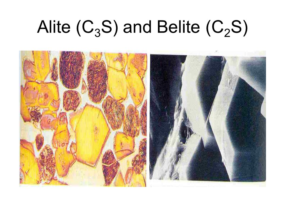 Alite (C 3 S) and Belite (C 2 S)