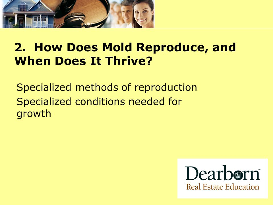 2.How Does Mold Reproduce, and When Does It Thrive.