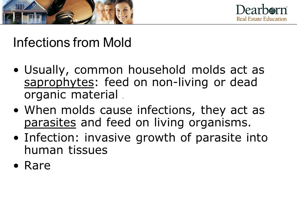 Infections from Mold Usually, common household molds act as saprophytes: feed on non-living or dead organic material.