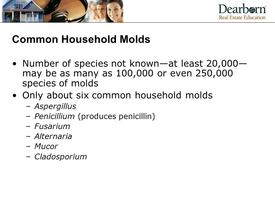 Common Household Molds Number of species not known—at least 20,000— may be as many as 100,000 or even 250,000 species of molds Only about six common household molds –Aspergillus –Penicillium (produces penicillin) –Fusarium –Alternaria –Mucor –Cladosporium