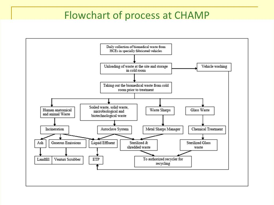 Feb 2010 Flowchart of process at CHAMP