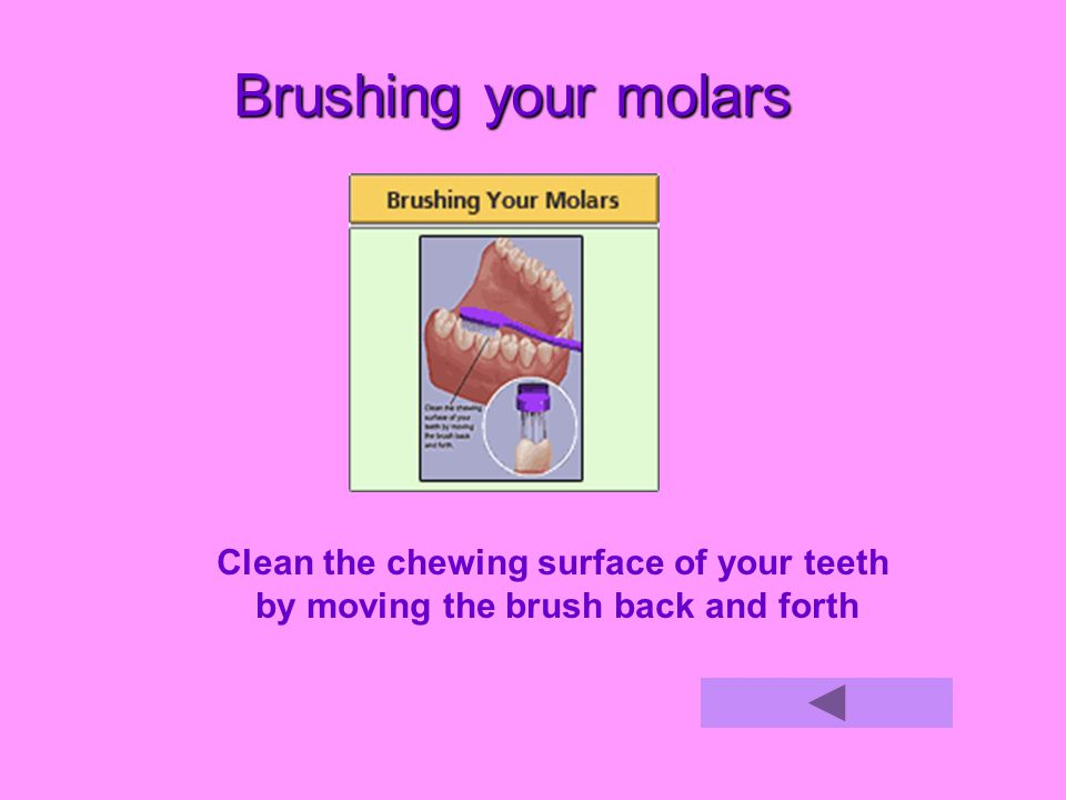 Brushing your molars Clean the chewing surface of your teeth by moving the brush back and forth