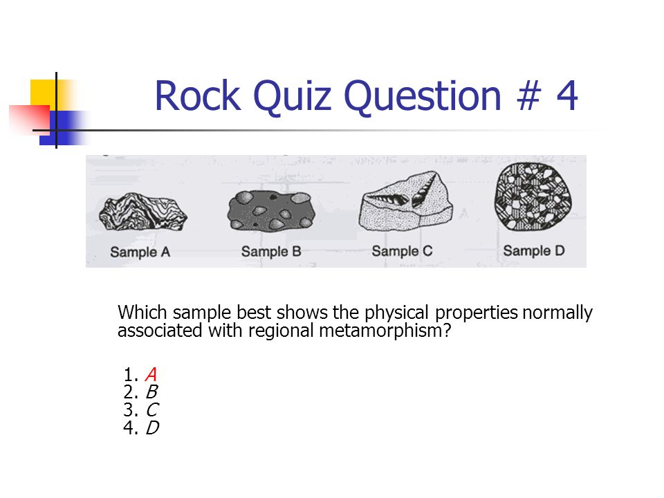 Rock Quiz Question # 4 Which sample best shows the physical properties normally associated with regional metamorphism? 1. A 2. B 3. C 4. D