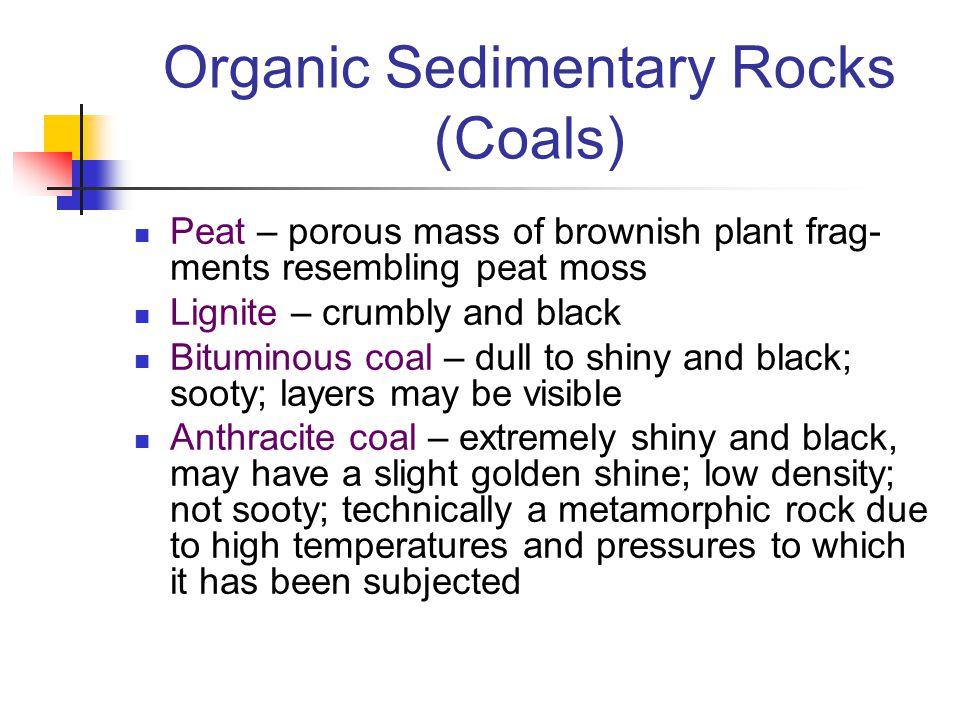 Organic Sedimentary Rocks (Coals) Peat – porous mass of brownish plant frag- ments resembling peat moss Lignite – crumbly and black Bituminous coal –