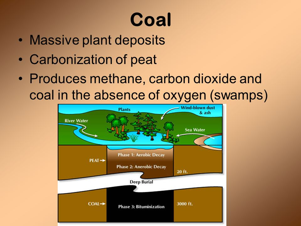 Coal Massive plant deposits Carbonization of peat Produces methane, carbon dioxide and coal in the absence of oxygen (swamps)