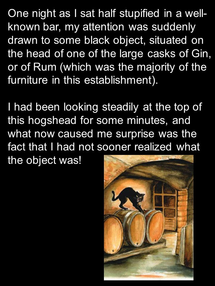 One night as I sat half stupified in a well- known bar, my attention was suddenly drawn to some black object, situated on the head of one of the large