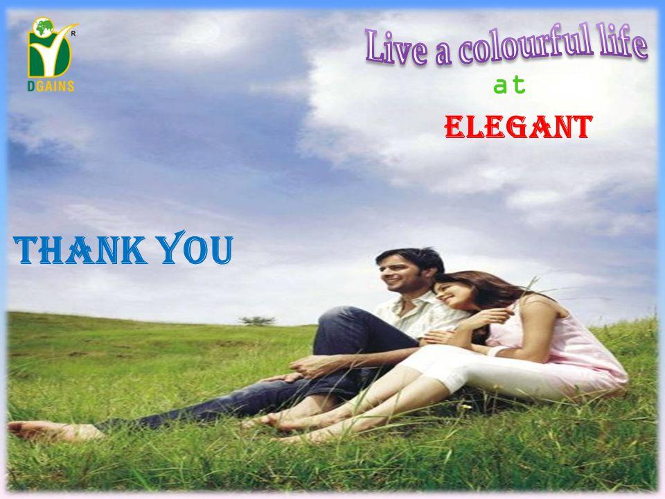 at ELEGANT THAnk you