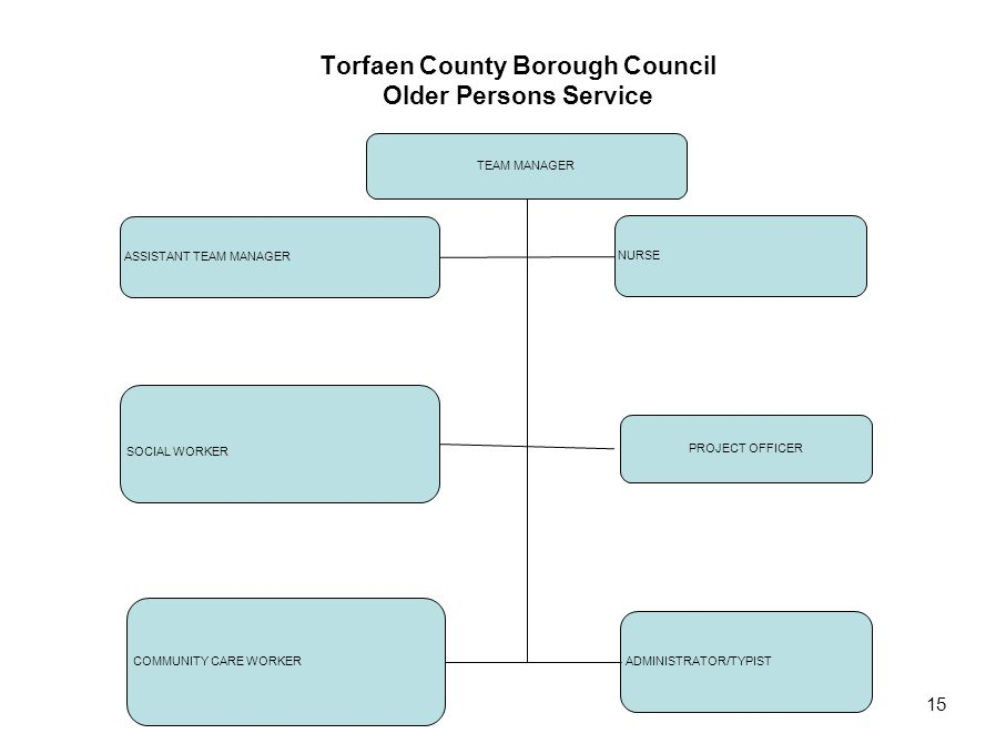 15 Torfaen County Borough Council Older Persons Service TEAM MANAGER ASSISTANT TEAM MANAGER NURSE SOCIAL WORKER ADMINISTRATOR/TYPIST COMMUNITY CARE WO