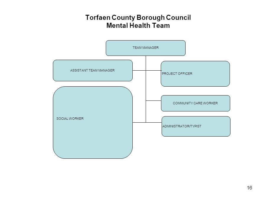 16 Torfaen County Borough Council Mental Health Team TEAM MANAGER ASSISTANT TEAM MANAGER SOCIAL WORKER PROJECT OFFICER COMMUNITY CARE WORKER ADMINISTR