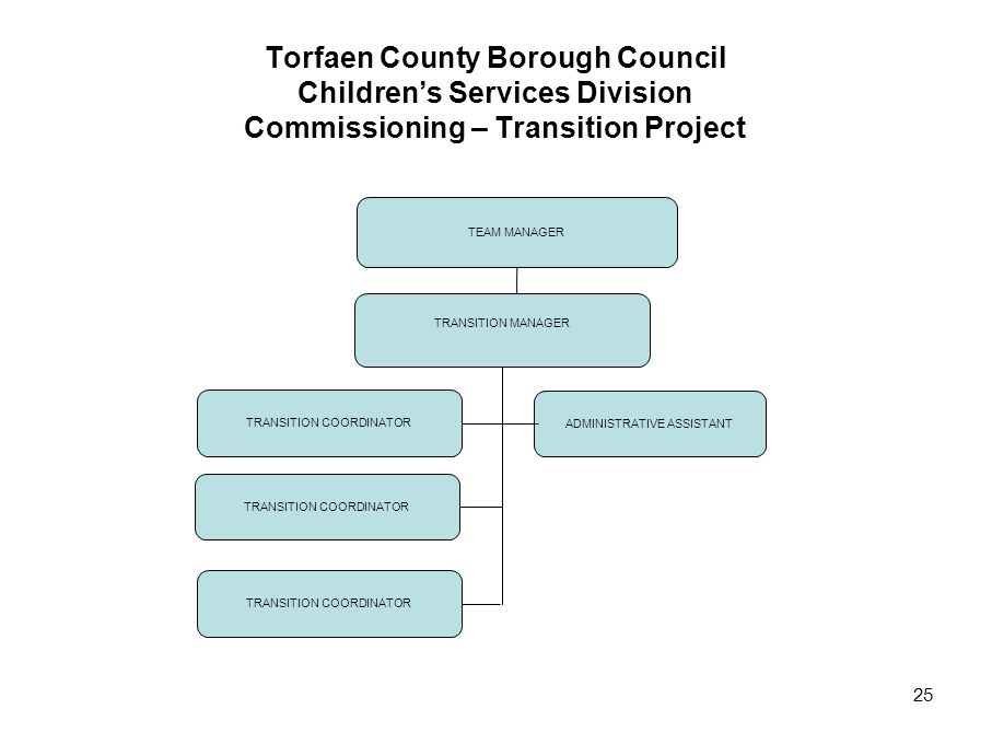 25 Torfaen County Borough Council Children's Services Division Commissioning – Transition Project TRANSITION MANAGER TRANSITION COORDINATOR ADMINISTRA