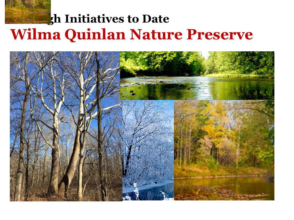 Borough Initiatives to Date Wilma Quinlan Nature Preserve