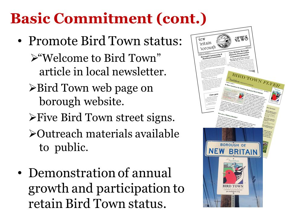 Basic Commitment (cont.) Promote Bird Town status:  Welcome to Bird Town article in local newsletter.