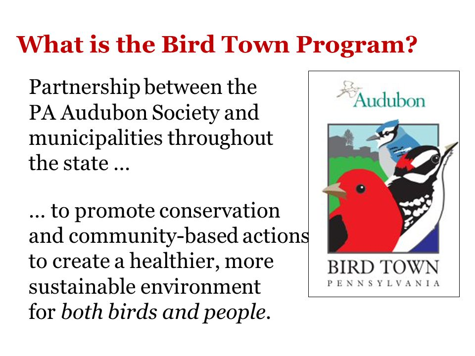 Audubon at Home Bird Habitat Recognition Program Audubon Pennsylvania recognizes that the people who care for this property pledge to provide healthy habitat that supports birds, butterflies, and other wildlife.