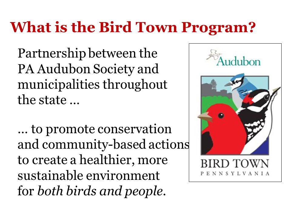 For more information about Bird Town program: http://pa.audubon.org/bird-town