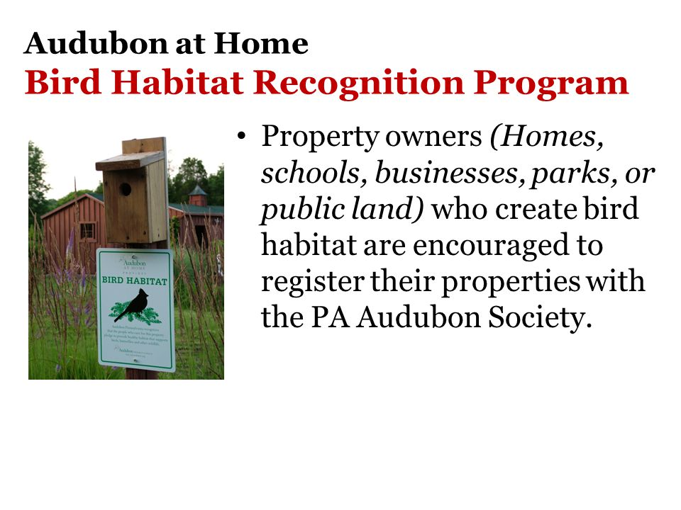 Audubon at Home Bird Habitat Recognition Program Property owners (Homes, schools, businesses, parks, or public land) who create bird habitat are encouraged to register their properties with the PA Audubon Society.