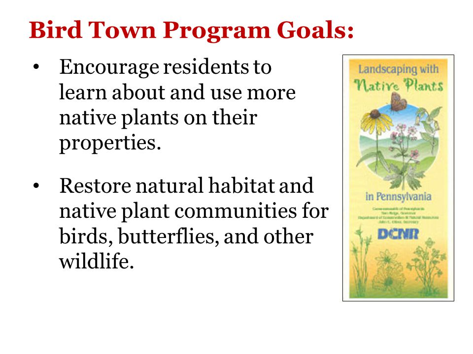 Why Native Plants.Better adapted to local environment.