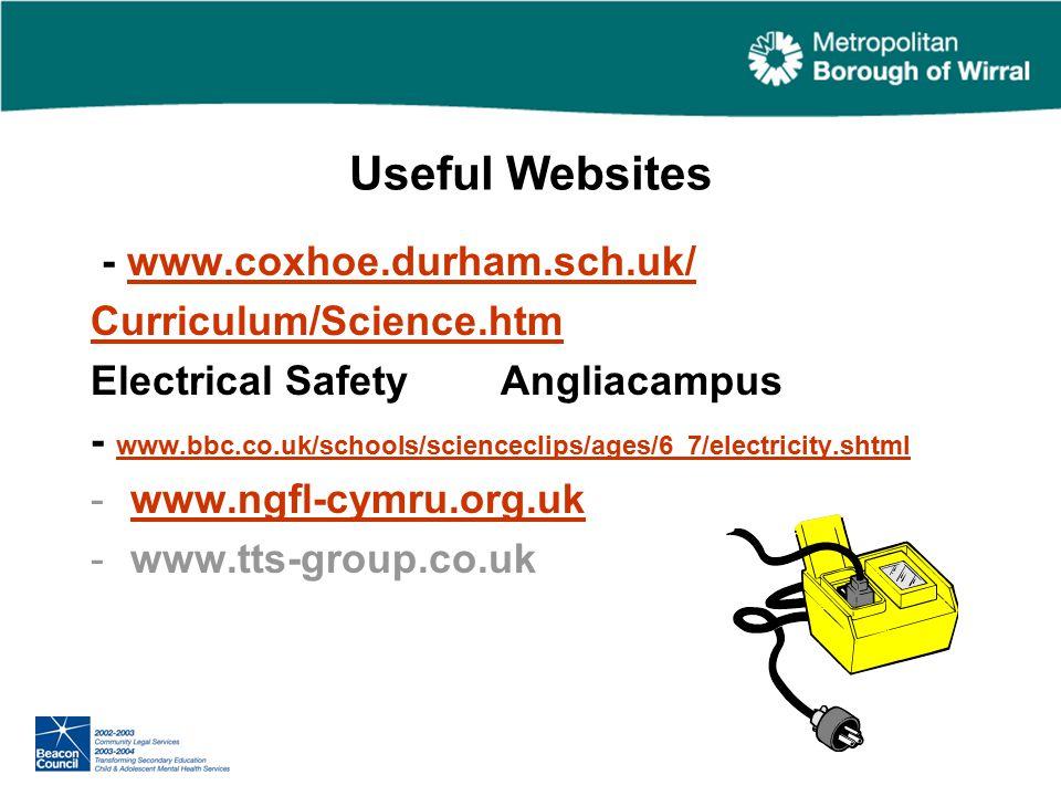 Useful Websites - www.coxhoe.durham.sch.uk/www.coxhoe.durham.sch.uk/ Curriculum/Science.htm Electrical Safety Angliacampus - www.bbc.co.uk/schools/scienceclips/ages/6_7/electricity.shtml www.bbc.co.uk/schools/scienceclips/ages/6_7/electricity.shtml -www.ngfl-cymru.org.ukwww.ngfl-cymru.org.uk -www.tts-group.co.uk