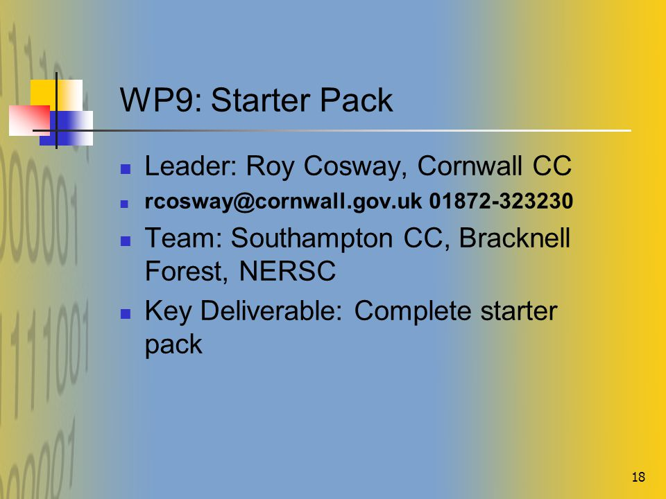 18 WP9: Starter Pack Leader: Roy Cosway, Cornwall CC rcosway@cornwall.gov.uk 01872-323230 Team: Southampton CC, Bracknell Forest, NERSC Key Deliverable: Complete starter pack
