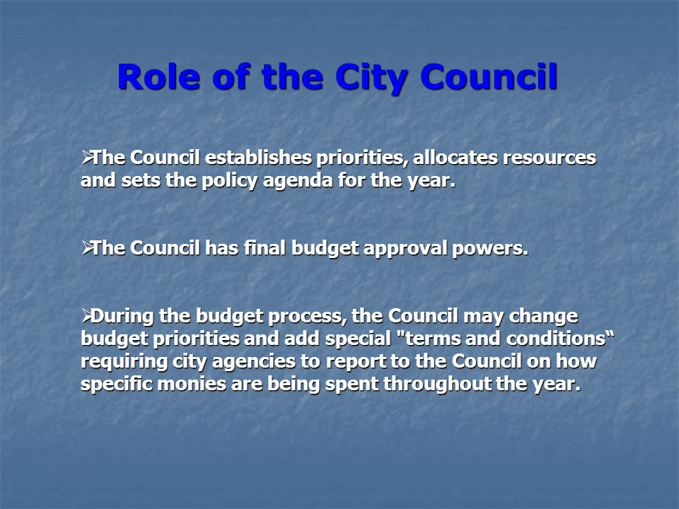  The Council establishes priorities, allocates resources and sets the policy agenda for the year.  The Council has final budget approval powers.  D