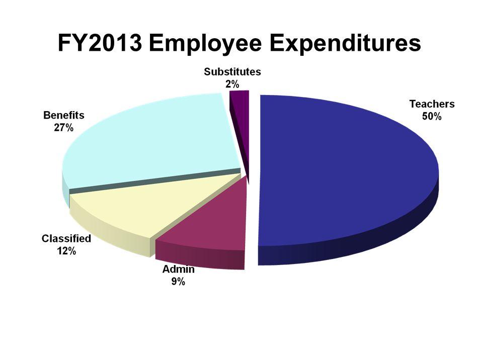 FY2013 Employee Expenditures