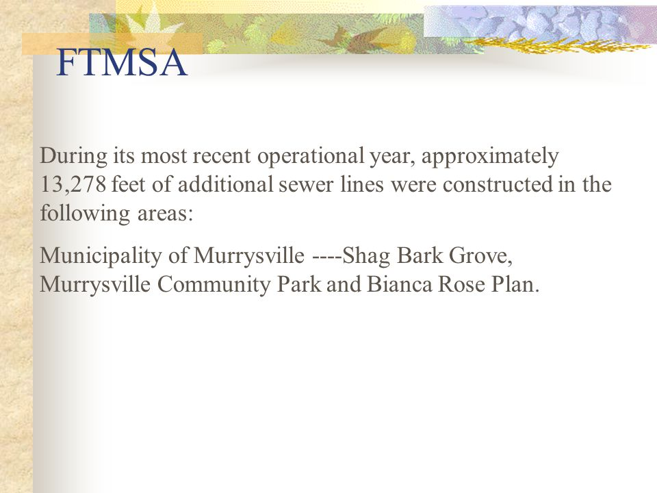 FTMSA During its most recent operational year, approximately 13,278 feet of additional sewer lines were constructed in the following areas: Municipality of Murrysville ----Shag Bark Grove, Murrysville Community Park and Bianca Rose Plan.