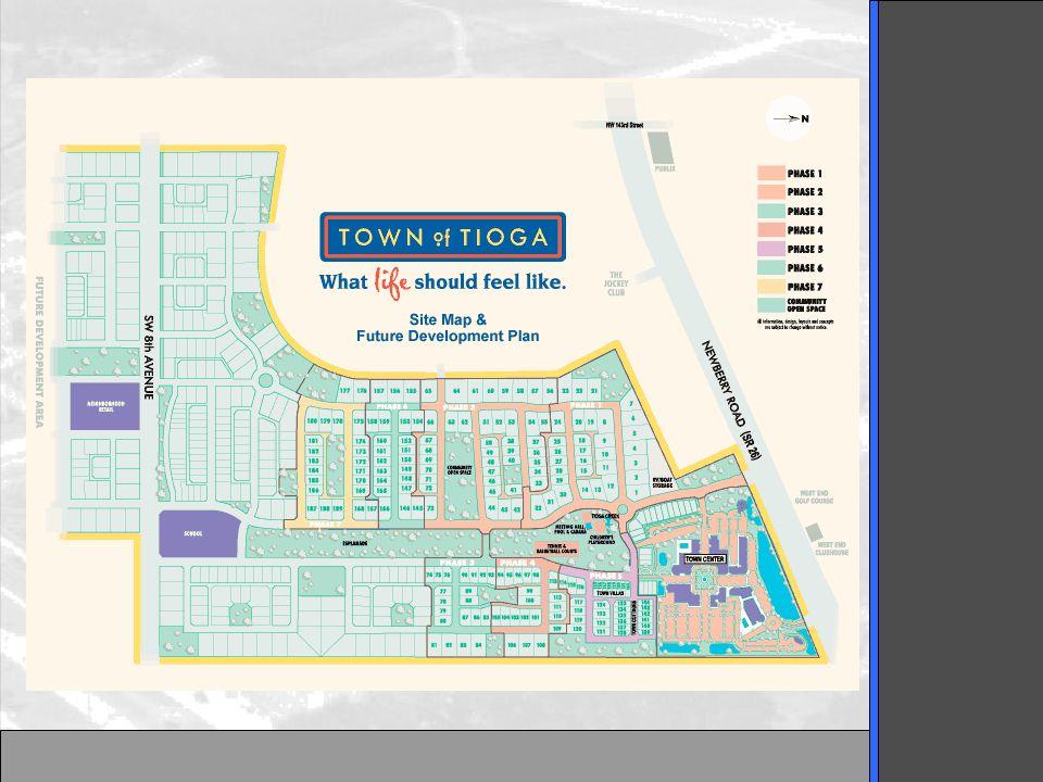 Village Design Plan