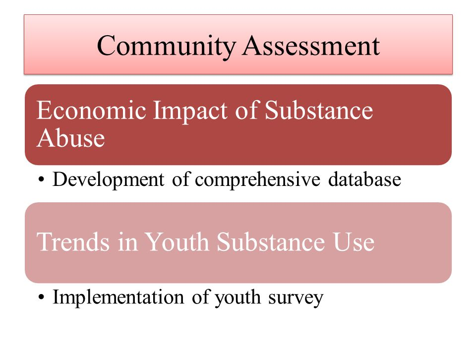 Community Assessment Economic Impact of Substance Abuse Development of comprehensive database Trends in Youth Substance Use Implementation of youth survey