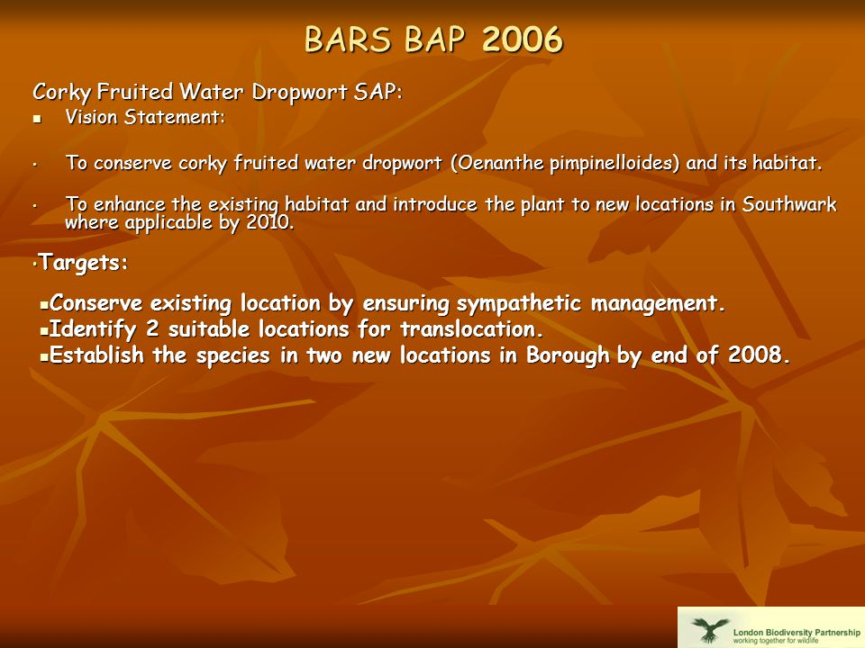 BARS BAP 2006 Corky Fruited Water Dropwort SAP: Vision Statement: Vision Statement: To conserve corky fruited water dropwort (Oenanthe pimpinelloides) and its habitat.