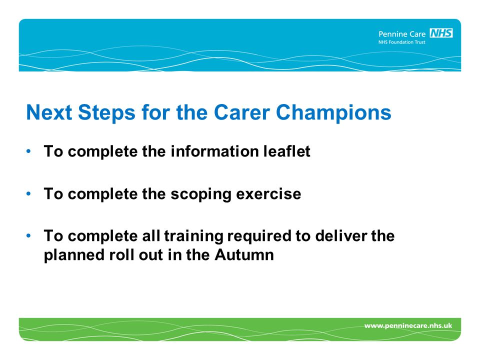 Next Steps for the Carer Champions To complete the information leaflet To complete the scoping exercise To complete all training required to deliver t