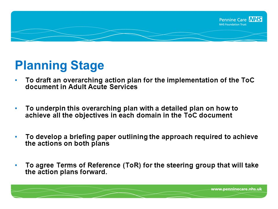 Planning Stage To draft an overarching action plan for the implementation of the ToC document in Adult Acute Services To underpin this overarching pla