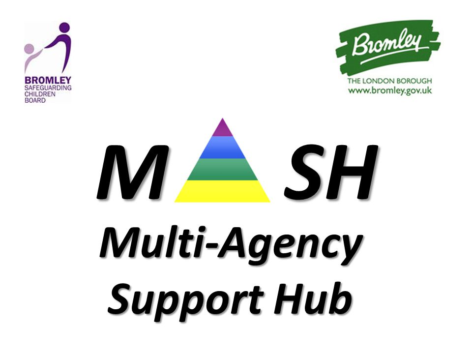 MSH M SH Multi-Agency Support Hub