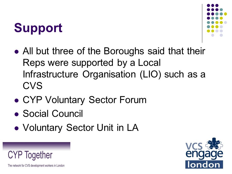 Support All but three of the Boroughs said that their Reps were supported by a Local Infrastructure Organisation (LIO) such as a CVS CYP Voluntary Sec