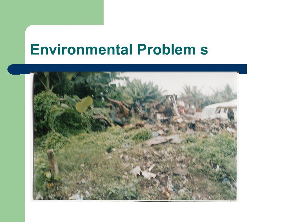 Environmental Problem s