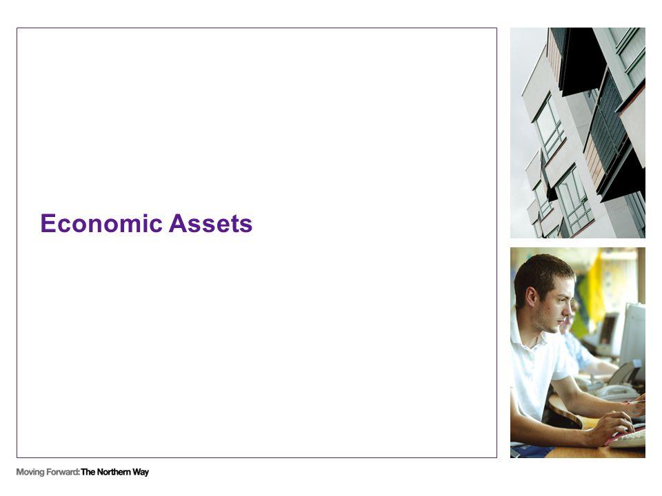 Economic Assets