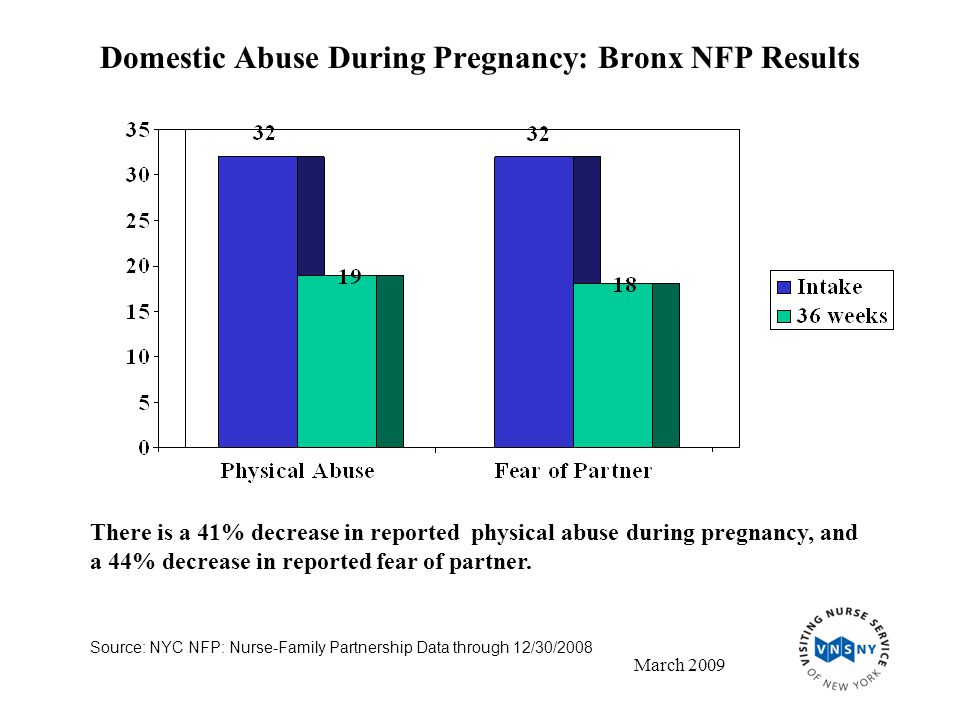 Domestic Abuse During Pregnancy: Bronx NFP Results Source: NYC NFP: Nurse-Family Partnership Data through 12/30/2008 March 2009 There is a 41% decrease in reported physical abuse during pregnancy, and a 44% decrease in reported fear of partner.