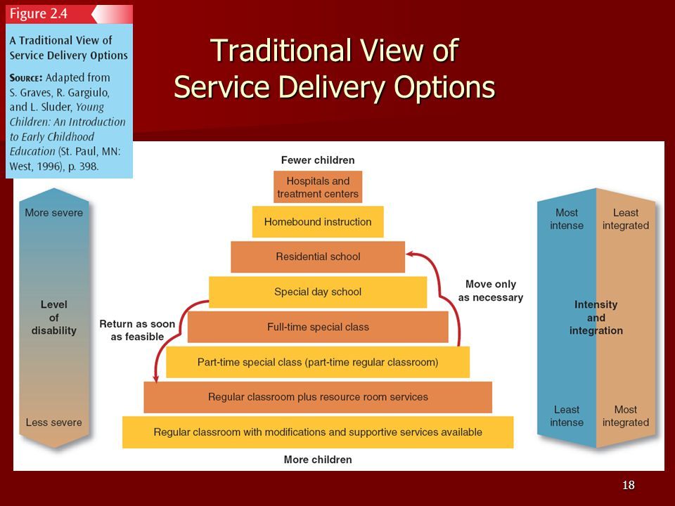 18 Traditional View of Service Delivery Options